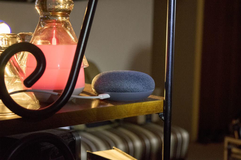 Google Home Mini Charcoal cryovex martin guay